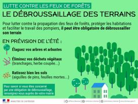 Feux de forêt : avant l'été, débroussaillez !