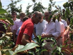 Déplacement dans l'Hérault de Didier Guillaume, Ministre de l'agriculture et de l'alimentation