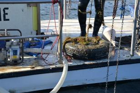 Le voyage d'Hiva Oa : retour en Méditerranée ... - Page 4 Operation-de-controle-des-mouillages-sauvages-sur-l-etang-de-Thau_large